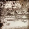 Aviary instagram-com Picture 5